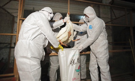 H7N9 bird flu health officials in China