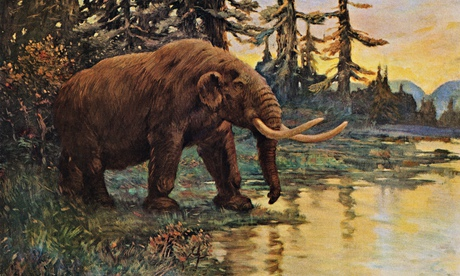 Illustration of a prehistoric mastodon