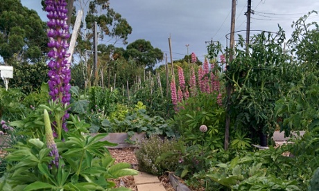 Rushall Garden, North Fitzroy