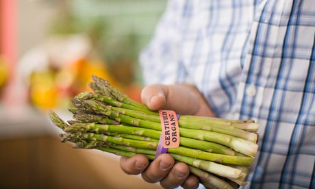 Tesco asparagus buyer: 'Asparagus, particularly the home-grown variety, has become one of the UK's trendiest vegetables.' Photograph: Jupiterimages/Getty Images