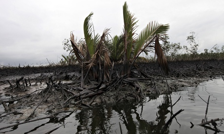 Shell chief to visit Nigeria in effort to clean up oil spills