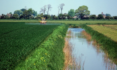 Tractor and sprayer spraying crop beside large drainage canal on Cambridgeshire