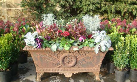 Anatomy of a garden - Cast iron planter