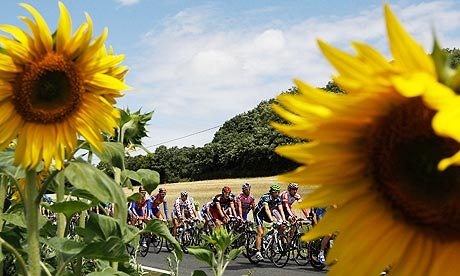 TDF2011Stage 8 sunflowers (AP)
