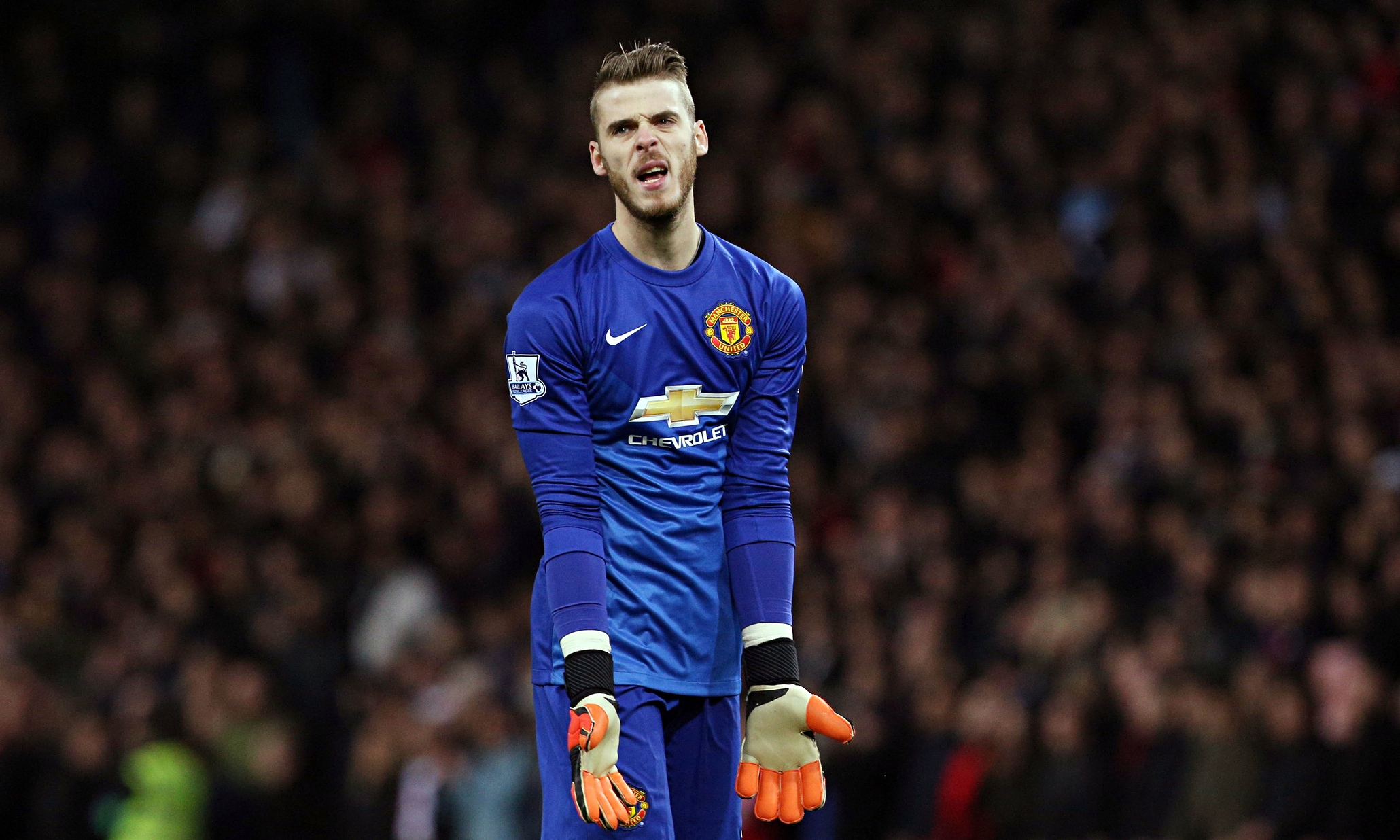 David De Gea has been benched all of 2015.