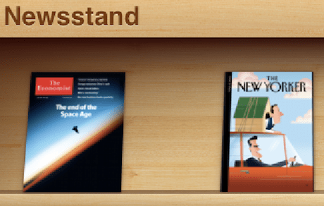 iPad 2 newsstand detail