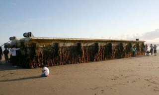 The floating dock from Japan that has washed up on a beach in Oregon, US.