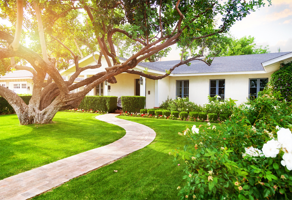 Front Yard Ideas: Simple DIY Front Yard Landscaping Ideas on Mansion Backyard Ideas id=43512