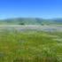 Tejon Ranch Conservancy icon