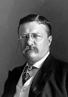 President Theodor Roosevelt