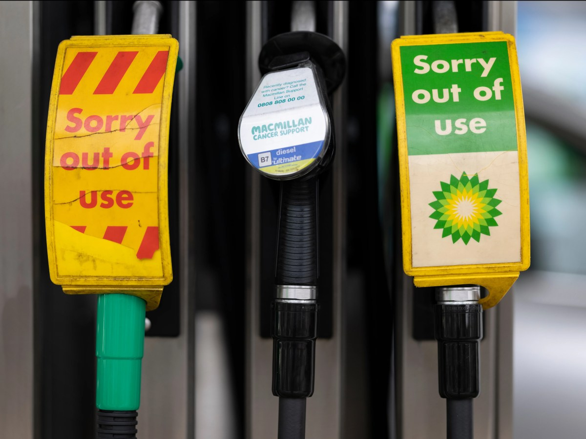 , Military could be drafted in as lorry drivers to combat fuel crisis, says minister, The Evepost BBC News