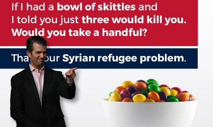 Image result for donald trump skittles