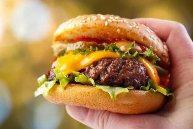 burger-not-vegan.jpg