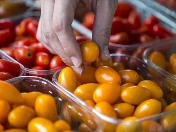 tomatoes_RF_Getty.jpg