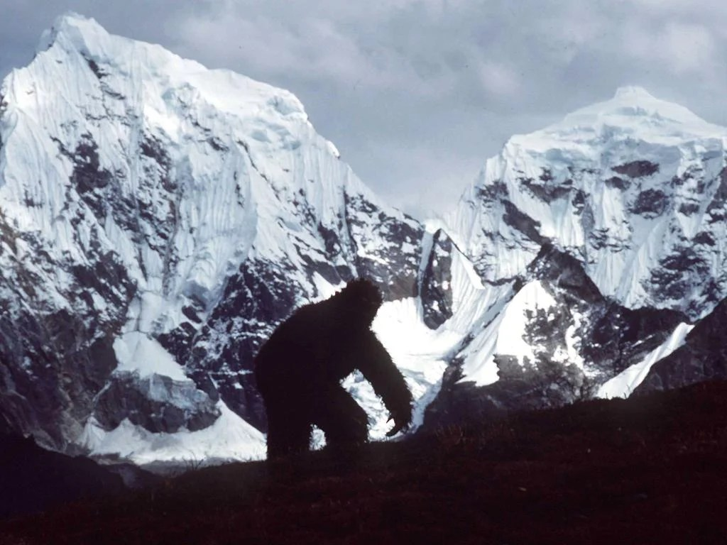Has The Yeti Mystery Been Solved New Research Finds