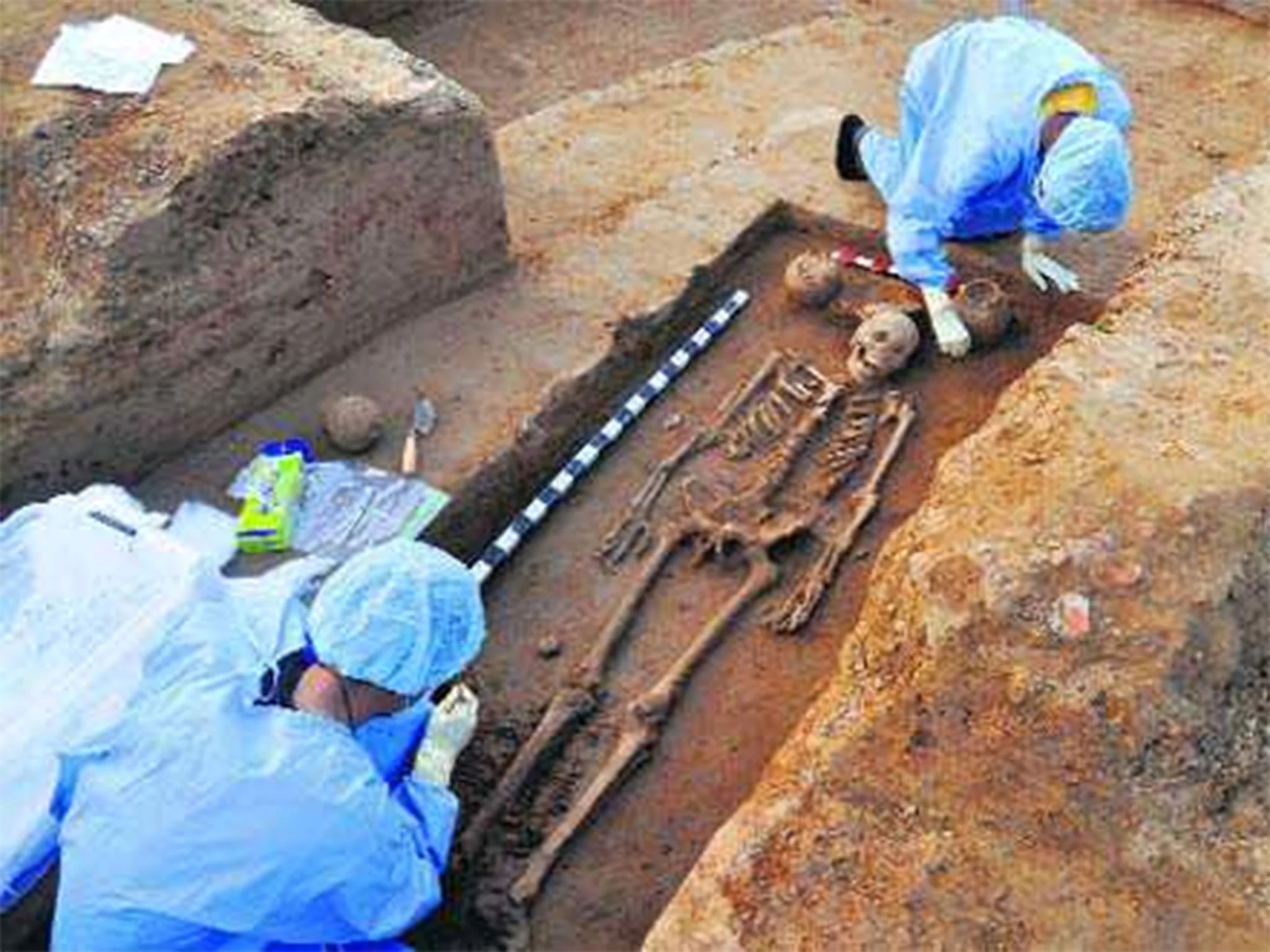 Ancient Skeletons Found In India Provide New Insight Into