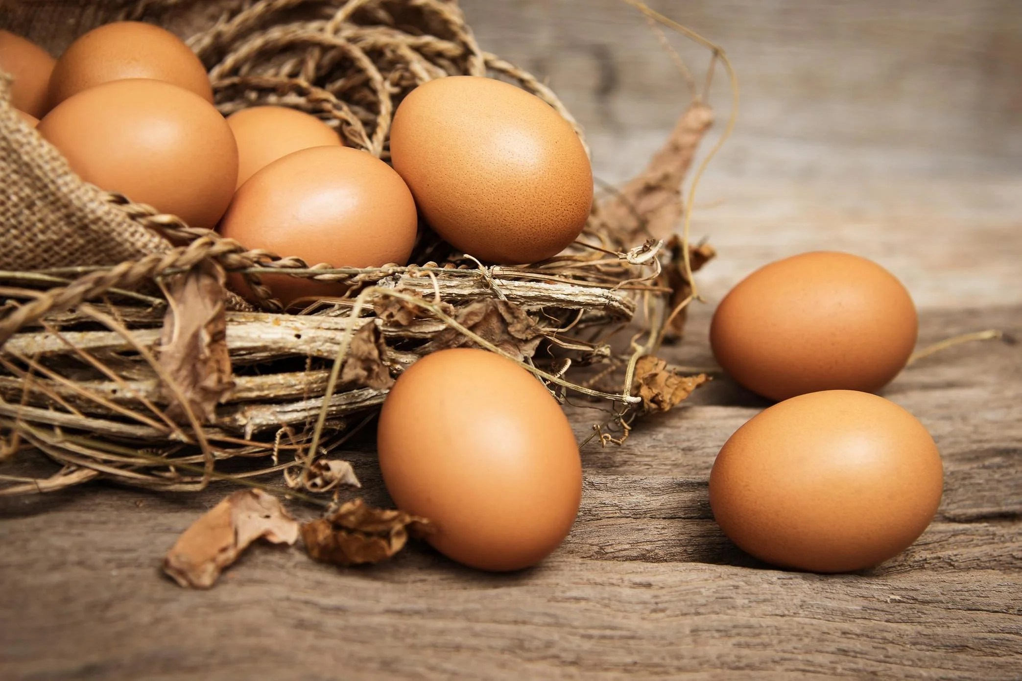 How To Tell If Your Eggs Have Gone Off