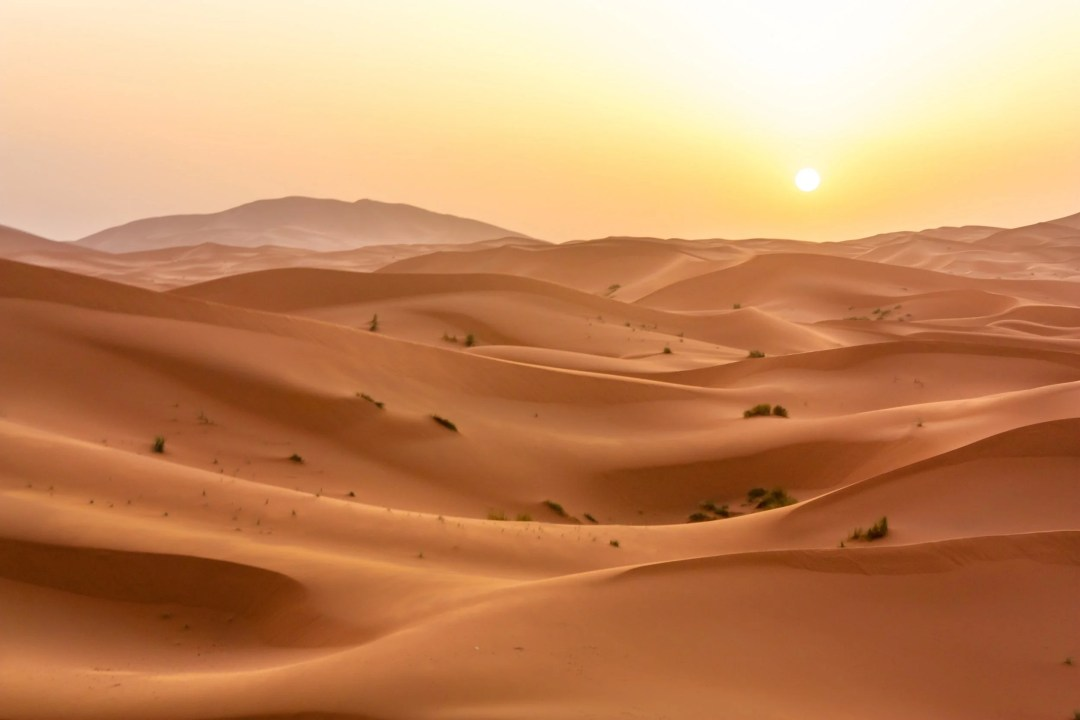 Does the Sahara desert hold the key?