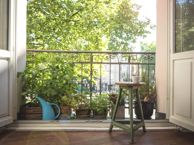 Everything You Need To Start Gardening On A Balcony Or Windowsill The Independent