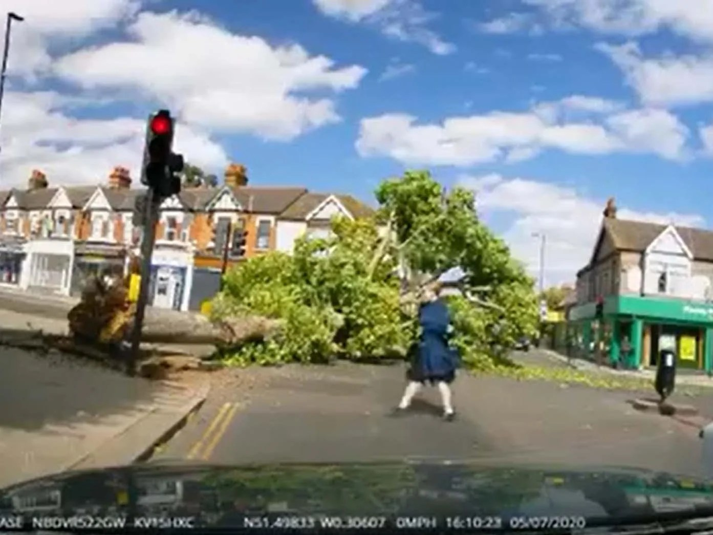 Falling tree narrowly misses pedestrians at London crossroads 11