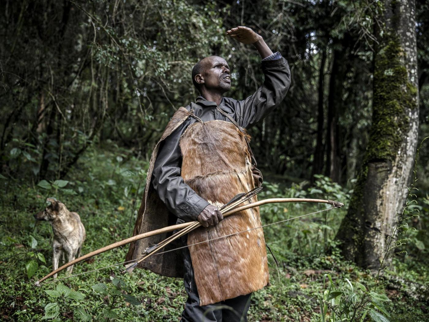 Ogiek hunter Joseph Kipkemoi Lesingo surveys a tree holding a beehive before collecting honey on a cold day
