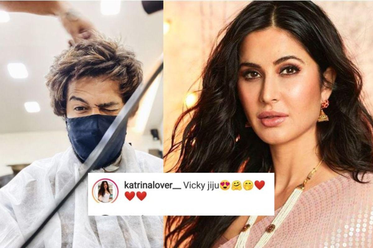 Katrina Kaif Fans Tease Vicky Kaushal With Jiju After Harshvardhan Kapoor Confirmed Their Relationship