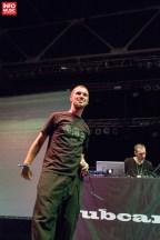 Subcarpati în deschiderea concertului The Cat Empire pe 31 iulie 2014