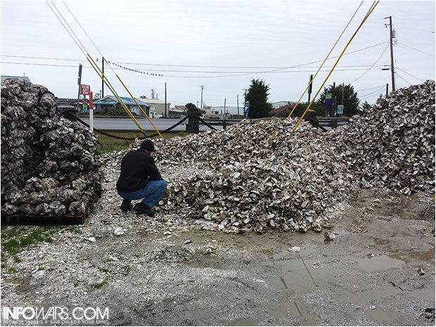 A pile of oyster shells only read 36 CPM in Charleston.