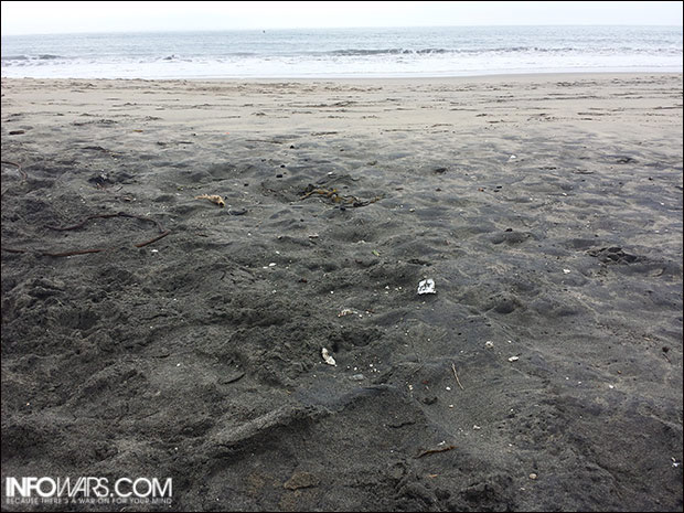 Area of Surfer's Beach covered in inexplicably radioactive black silt.