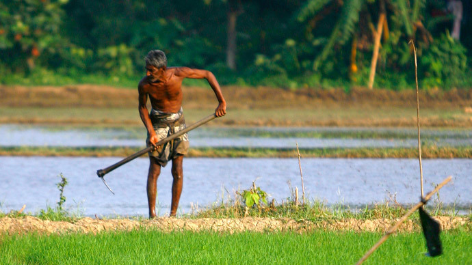 A farmer tills a rice paddy field on the outskirts of Colombo, Sri Lanka (Reuters / Andrew Caballero-Reynolds)