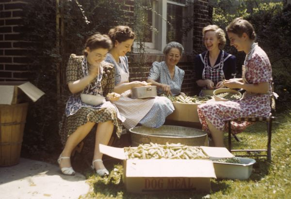 Several women sitting in a circle, prepping beans for canning