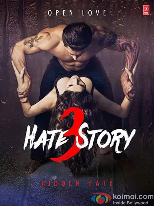 Poster do filme Hate Story 3