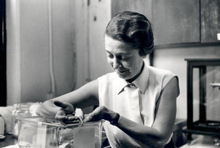 Женщина, удостоенная Нобелевской премии в области медицины   Фото: womanontop.ru