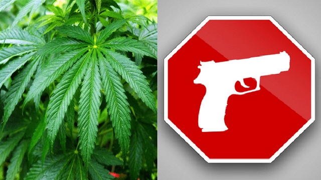 Medical Marijuana Means Losing Your Second Amendment Right
