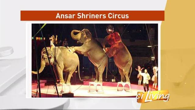 2017 Ansar Shrine Circus