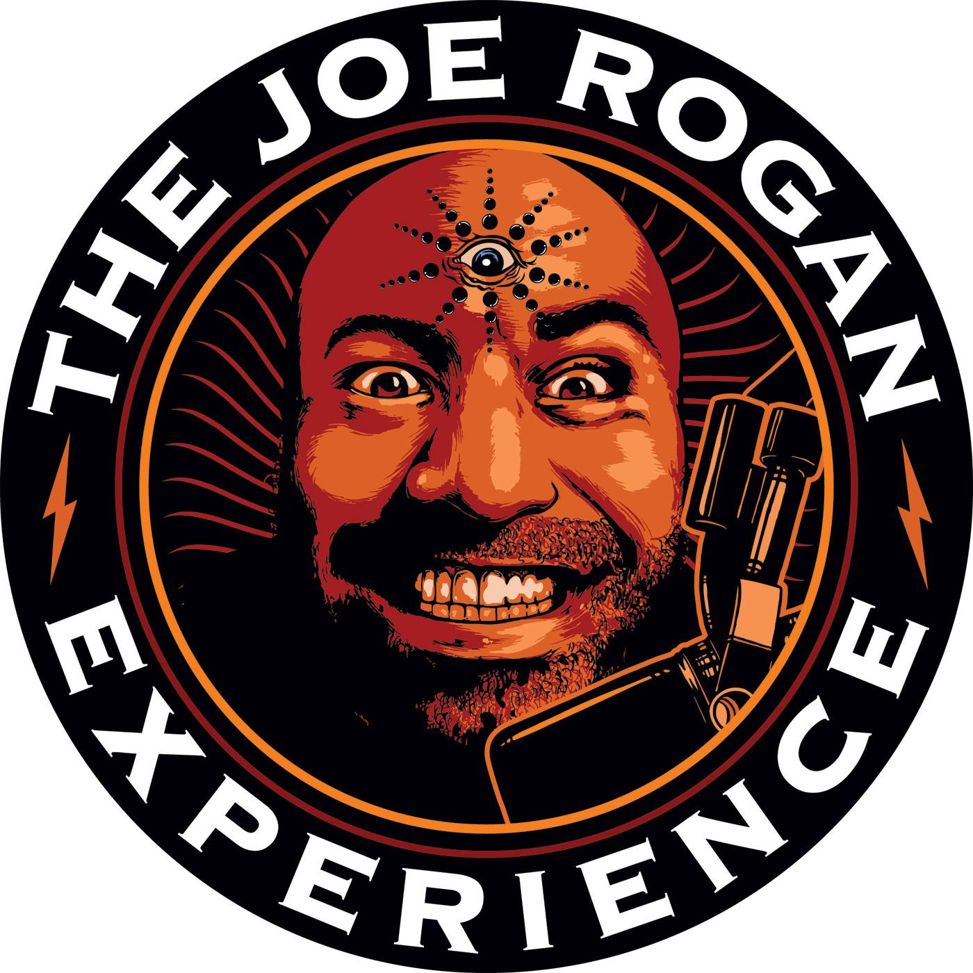 Image result for joe rogan experience