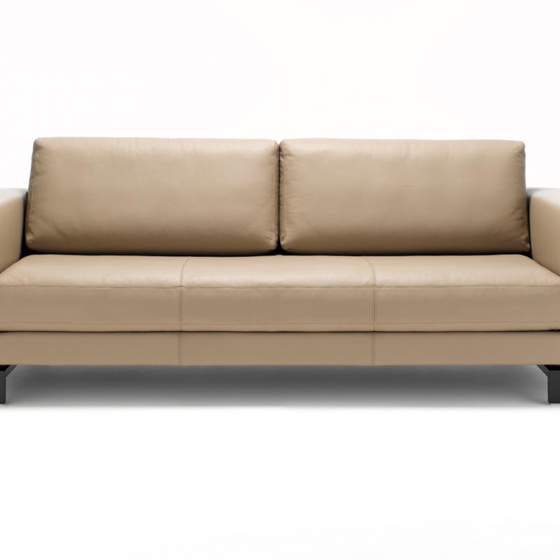 rolf benz vida rolf benz sofa lobof