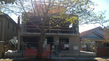 Front on, with the grand old tree in front