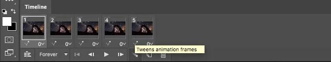 advanced animated gif photoshop instructions
