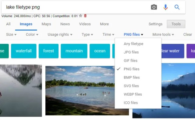 Google Image Search by Filetype