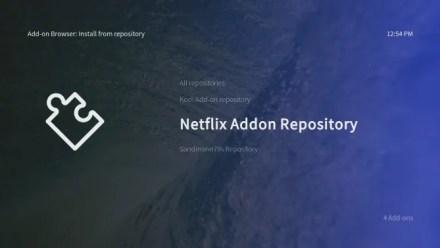 Install Netflix add-on for Raspberry Pi