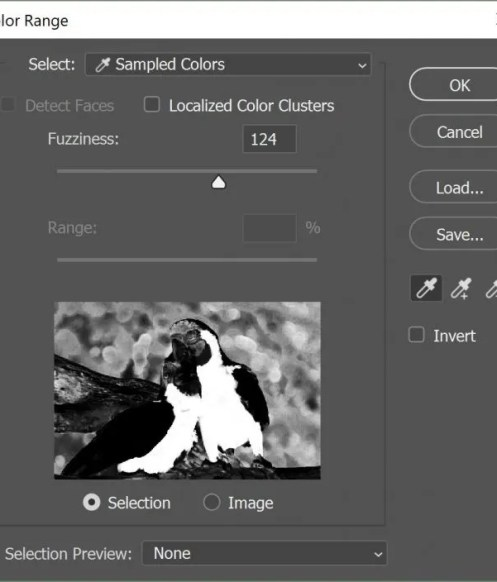 Photoshop Select Color 2 e1530204676457 - How to Select All of the Same Color in Photoshop