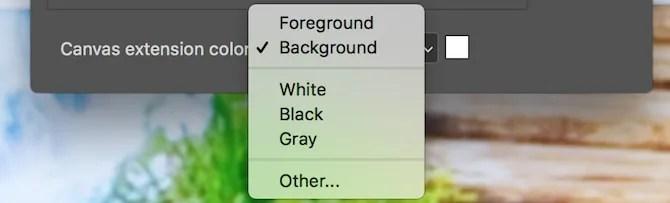 Photoshop canvas extension color options