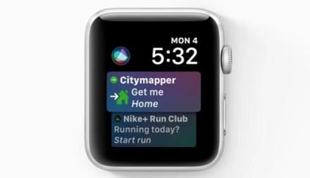 watchOS 5 Siri Face