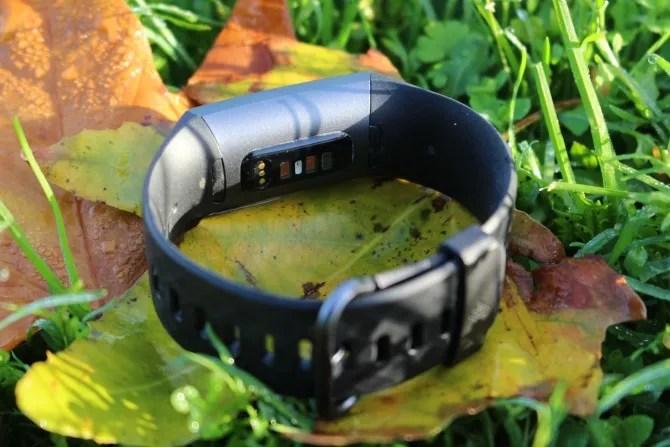 Parte inferiore della carica Fitbit 3 sulle foglie