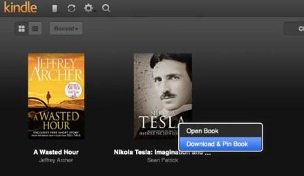 Save ebook offline in Kindle Cloud Reader