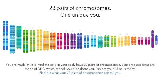 DNA testing services online