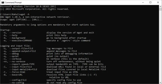 run wget from the command prompt