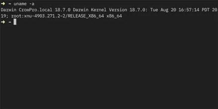 Darwin kernel info in macOS