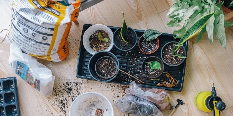 Aplicaciones de jardinería y sitios web